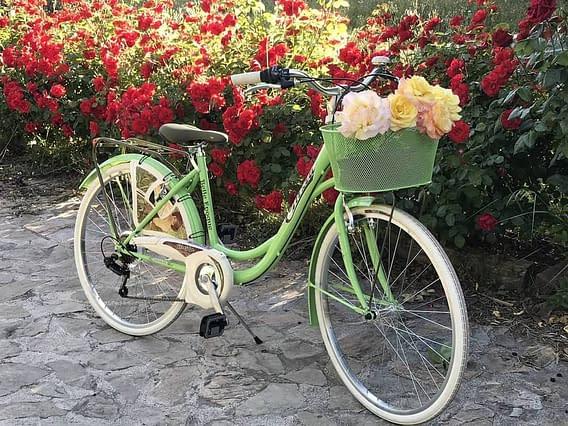 Accesorios de bicicleta vintage